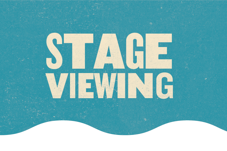 Stage Viewing at River and Blues Festival